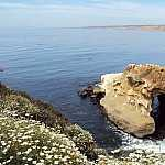 You might also be interested in LA JOLLA