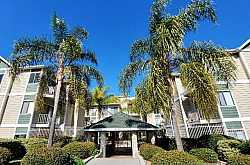 BROADWAY PINES Condos For Sale