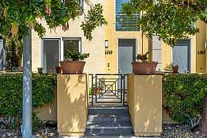 Browse active condo listings in HILLCREST