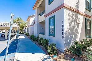 Browse active condo listings in HILLTOP OF SABRE SPRINGS