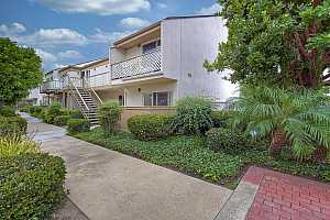Browse active condo listings in CLAIREMONT